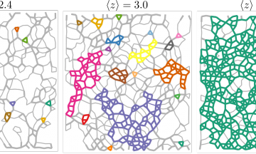 Images of disordered lattices, overlayed with the rigid clusters